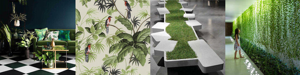 Biophilic Design and the love of nature