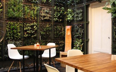 The Definitive Guide to Successful Outdoor Spaces for Hospitality