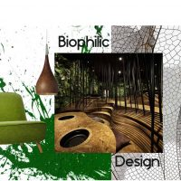 How to incorporate Biophilic Design into your Home Interior
